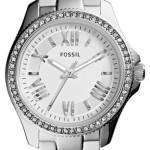 Fossil Cecile Silver Dial Crystal Stainless Steel AM4576 Womens Watch