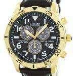 Citizen Eco-Drive Perpetual Calendar Chronograph Alarm 100M BL5472-01E Men's Watch