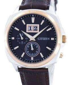 Citizen Eco-Drive Perpetual Calendar BT0084-07E Mens Watch