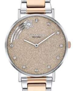 Coach Perry Brown Dial Two Tone Stainless Steel Quartz 14503522 Womens Watch